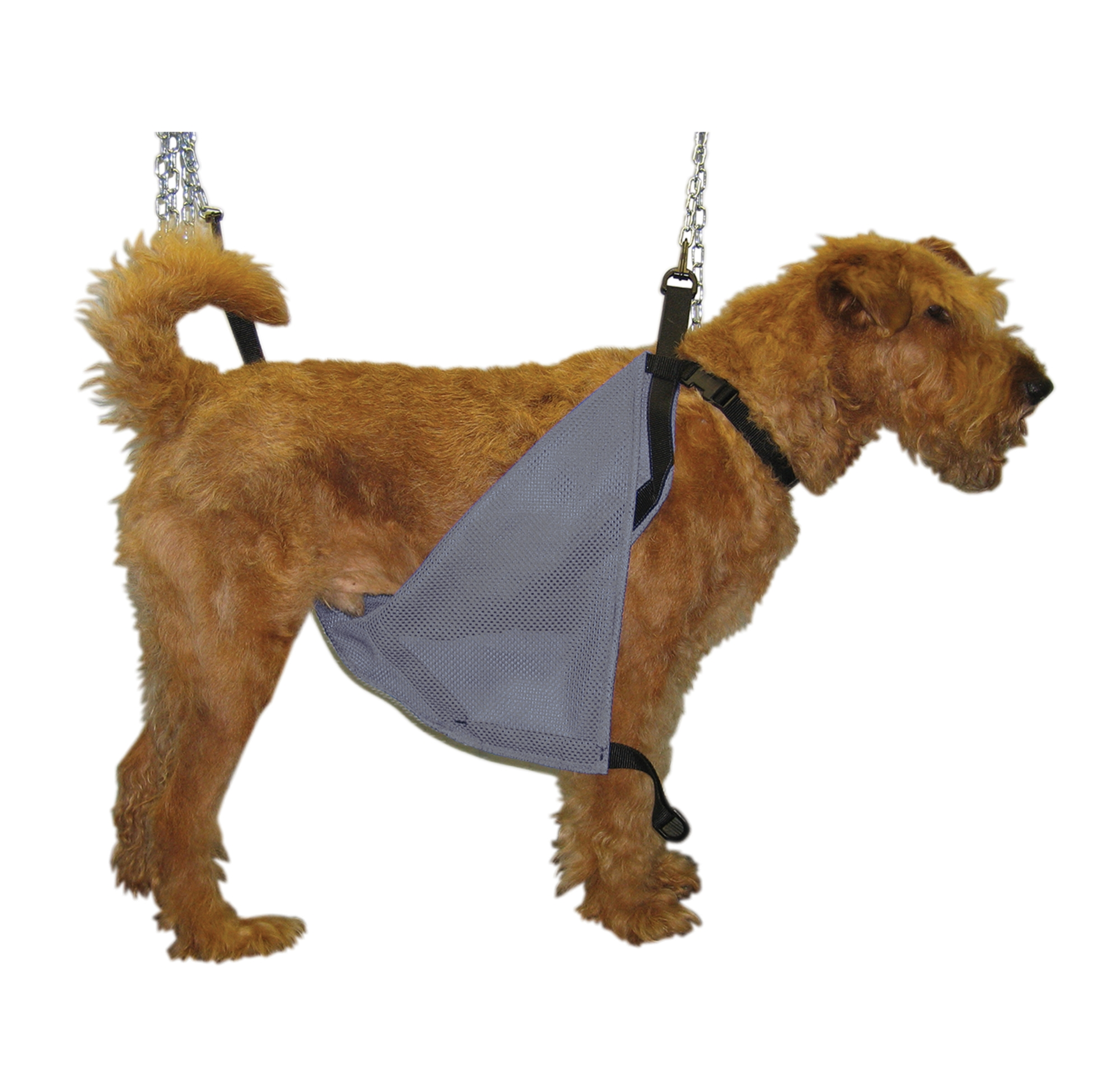 Dog Grooming Harness Uk Great Installation Of Wiring Diagram